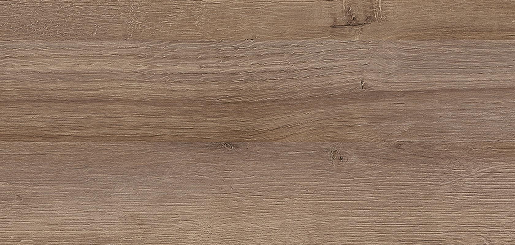 196 Ontario oak reproduction