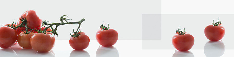 Niche cladding with Décor Tomato by nobilia.
